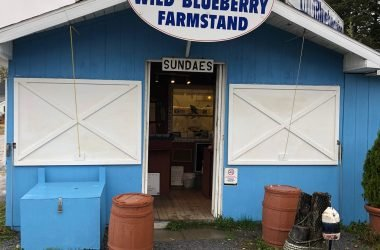 mckays blueberry farm