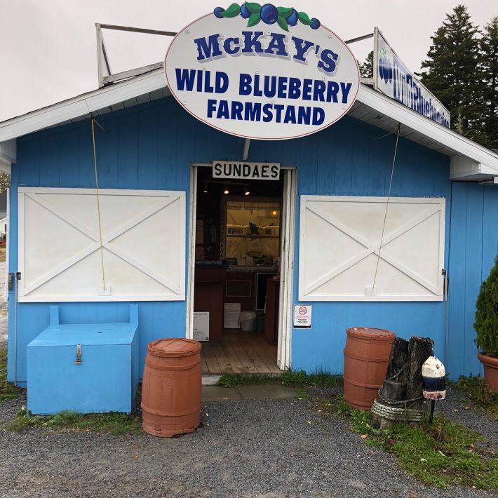 mckays blueberry farm